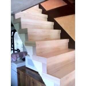 Escalier à rénover sur beton-38300-domarin