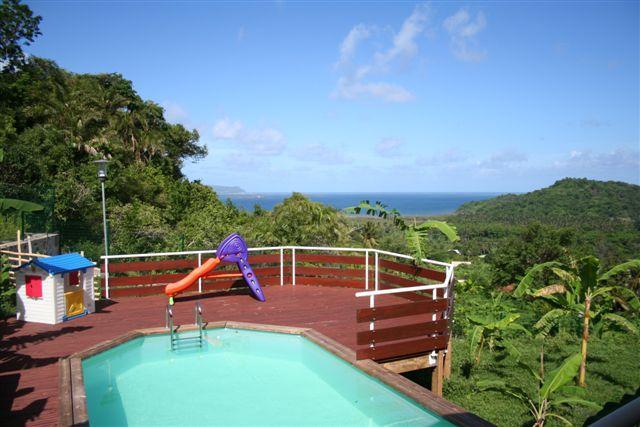 Photo piscine piscine bois et terrasse en bois for Piscine bois 5mx3m